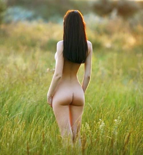 на цветущем поле