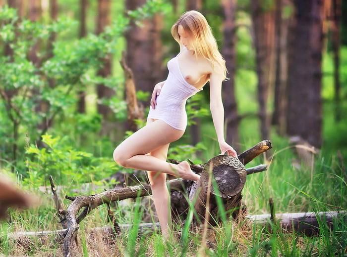 Фея леса