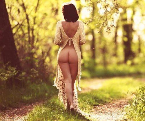 В этом волшебном лесу...